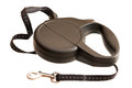 Retractable leash for dog isolated on white background Royalty Free Stock Photo