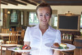 Retrato del restaurante de serving food in de la camarera Imagen de archivo libre de regalías