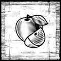 Retro apple black and white Royalty Free Stock Photo