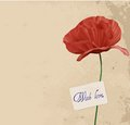Retro background with poppy flower Royalty Free Stock Images