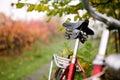 Retro Bike Detail Royalty Free Stock Image