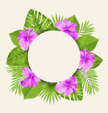 Retro Card with Purple Hibiscus Flowers and Green Tropical Leaves Royalty Free Stock Photo