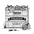 Retro crate of grapes black and white wooden in woodcut style editable vector illustration with clipping mask Royalty Free Stock Photo