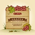 Retro crate of grapes wooden in woodcut style editable eps vector illustration with clipping mask and transparency Royalty Free Stock Image