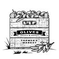 Retro crate of olives black and white wooden in woodcut style editable vector illustration with clipping mask Royalty Free Stock Image