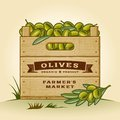 Retro crate of olives wooden in woodcut style editable eps vector illustration with clipping mask and transparency Stock Image