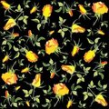 Retro floral background. Rose. Stock Photo