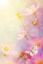 Retro flowers background Royalty Free Stock Photo