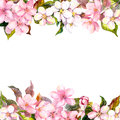 Retro pink flowers - apple, cherry blossom. Floral frame for greeting card. Aquarelle Royalty Free Stock Photo