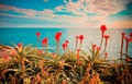 Retro seascape with flowers. Royalty Free Stock Photo