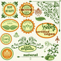 Retro style labels and floral design elements Stock Photos