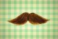 Retro styled image of a moustache in front of green wallpaper ginger Royalty Free Stock Images