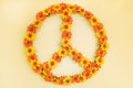 Retro styled image of a seventies flower power peace sign Royalty Free Stock Photo