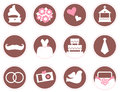 Retro wedding design elements and icons brown pink vector Royalty Free Stock Photos