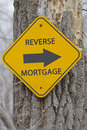 Reverse mortgage arrow sign on tree making a great concept Stock Photography