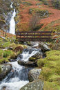 Rhaeadr Bach Falls North Wales Royalty Free Stock Photo