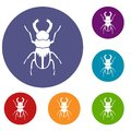 Rhinoceros beetle icons set