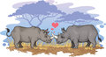 Rhinos in love two falling the african savanna Royalty Free Stock Images
