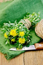 Rhodiola rosea with knife and a coil of rope on board flowers tied twine ball twine green napkin wooden Royalty Free Stock Photo