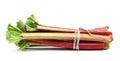Rhubarb Stock Images