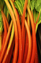 Rhubarb at a local farm stand Royalty Free Stock Image