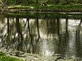 Ribble reflections Royalty Free Stock Photo