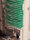 Ribbon to fiber transition and fiber routing in the back of a f distribution hub panel connecting homes broad band services in Royalty Free Stock Images