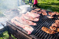 Ribs on grill Royalty Free Stock Photo