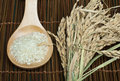 Rice baldo in wooden spoon Royalty Free Stock Photos