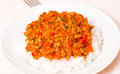 Rice with bolognese sauce on plate Royalty Free Stock Images