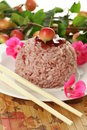 Rice and cherry Stock Photography