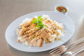 Rice with crispy pork on steel table Royalty Free Stock Image