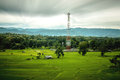 Rice farm and antenna cellular hut forest mountain in northern thailand Stock Images