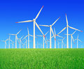 Rice farms Modern wind turbines Royalty Free Stock Image