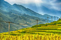 Rice field terraces surrounded by a spectacular bl blue sky black hmong village area sapa vietnam landscape orientation Stock Photos
