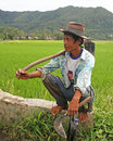 Rice Field Worker in the Harau Valley in West Sumatra, Indonesia Royalty Free Stock Photo
