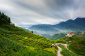 Rice fields on terraced in rainny season at sapa lao cai vietnam prepare for transplant northwest Royalty Free Stock Image