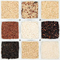 Rice grain varieties selection in white porcelain bowls Stock Photography