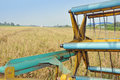 Rice harvesting part machine with rice field Royalty Free Stock Photos