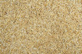 Rice husk background texture Royalty Free Stock Photo