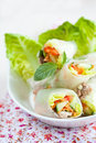 Rice paper springrolls Stock Photos