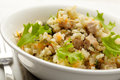 Rice with pork, carrots and spinach Stock Images