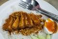 Rice roasted red pork thai food Stock Photos