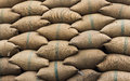 Rice sacks in warehouse Royalty Free Stock Photo