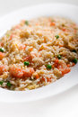 Rice with shrimp Stock Photography