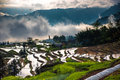 Rice terraces and fog of a small mountain village which in jiangjin district of chongqing china Stock Photography