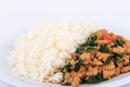 Rice topped with stir fried chicken and basil fried stir basil with minced chicken on white background isolated Royalty Free Stock Photography