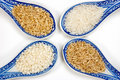 Rice varieties Royalty Free Stock Photography