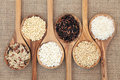 Rice Varieties Royalty Free Stock Photo