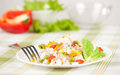 Rice and vegetables Royalty Free Stock Images